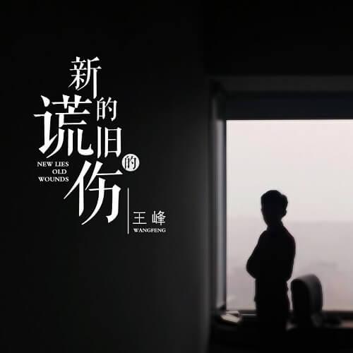 Xin De Huang Jiu De Shang 新的谎旧的伤 New Lies Old Wounds Lyrics 歌詞 With Pinyin