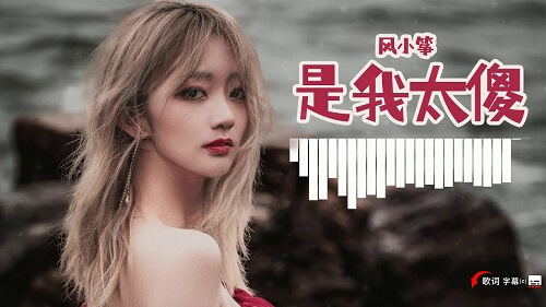 Shi Wo Tai Sha 是我太傻 Is My Stupid Lyrics 歌詞 With Pinyin