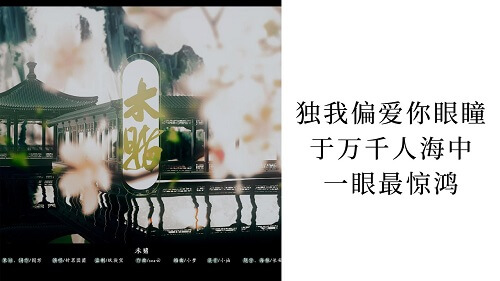 Wei Du 未赌 Not Bet Lyrics 歌詞 With Pinyin