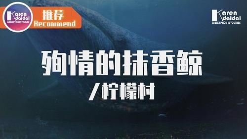 Xun Qing De Mo Xiang Jing 殉情的抹香鲸 A Martyred Sperm Whale Lyrics 歌詞 With Pinyin