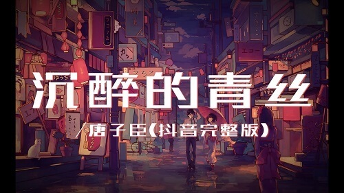 Chen Zui De Qing Si 沉醉的青丝 The Black Hair Of Intoxication Lyrics 歌詞 With Pinyin