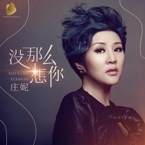 Mei Na Me Xiang Ni 没那么想你 I Don't Miss You So Much Lyrics 歌詞 With Pinyin