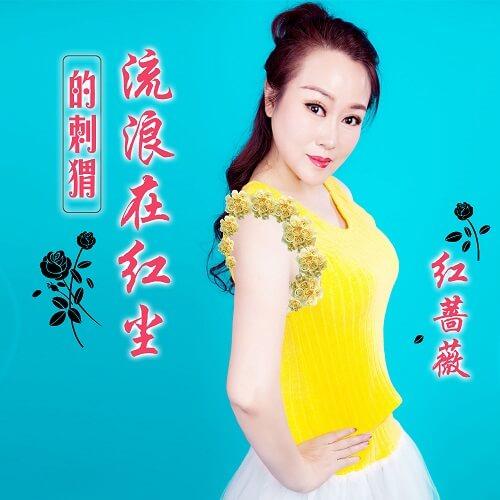 Liu Lang Zai Hong Chen De Ci Wei 流浪在红尘的刺猬 Wandering In The World Of Hedgehogs Lyrics 歌詞 With Pinyin