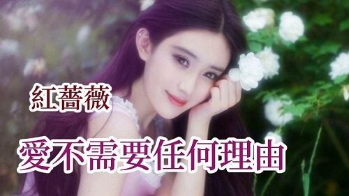 Ai Bu Xu Yao Ren He Li You 爱不需要任何理由 Love Doesn't Need Any Reason Lyrics 歌詞 With Pinyin