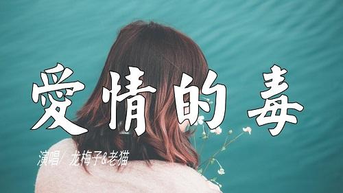 Ai Qing De Du 爱情的毒 Love Is Poison Lyrics 歌詞 With Pinyin