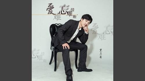 Ai Nan Wang Qing Nan Duan 爱难忘情难断 Love Never Forgets Lyrics 歌詞 With Pinyin