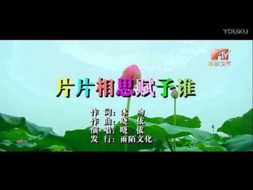 Pian Pian Xiang Si Fu Yu Shui 片片相思赋予谁 The Piece Of Acacia Gives Who Lyrics 歌詞 With Pinyin B