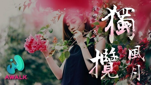 Du Lan Feng Yue 独揽风月 All Romantic Lyrics 歌詞 With Pinyin