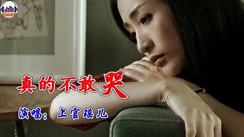 Zhen De Bu Gan Ku 真的不敢哭 Really Dare Not Cry Lyrics 歌詞 With Pinyin