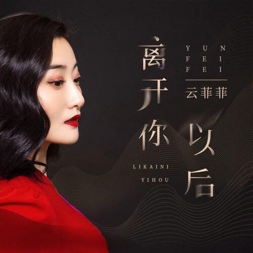 Li Kai Ni Yi Hou 离开你以后 After Leaving You Lyrics 歌詞 With Pinyin