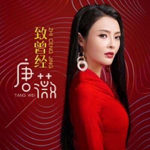 Zhi Ceng Jing 致曾经 To Once Lyrics 歌詞 With Pinyin