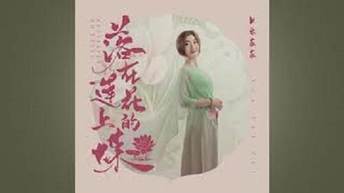Luo Zai Lian Hua Shang De Die 落在莲花上的蝶 A Butterfly On A Lotus Lyrics 歌詞 With Pinyin