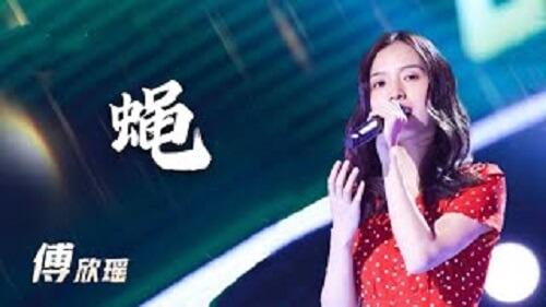 Ying 蝇 Fly Lyrics 歌詞 With Pinyin