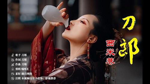 Xi Mi Xiang 西米巷 Sago Lane Lyrics 歌詞 With Pinyin