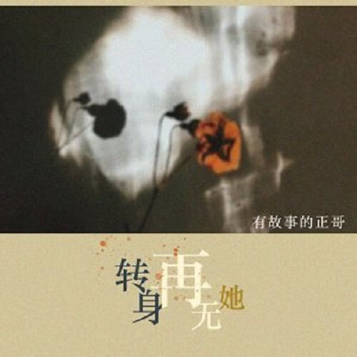 Zhuan Shen Zai Wu Ta 转身再无她 Turn Around And Leave Her Alone Lyrics 歌詞 With Pinyin