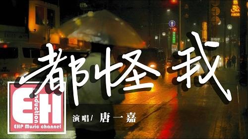 Dou Guai 都怪 All Blame Lyrics 歌詞 With Pinyin
