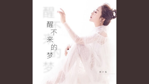 Xing Bu Lai De Meng 醒不来的梦 A Dream That Won't Wake Up Lyrics 歌詞 With Pinyin