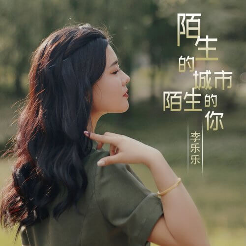 Mo Sheng De Cheng Shi Mo Sheng De Ni 陌生的城市陌生的你 Strange City Strange You Lyrics 歌詞 With Pinyin