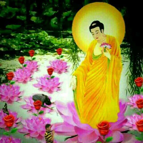 Jin Sheng Wo Zai Xiu Fo Yuan 今生我在修佛缘 I'm Practicing Buddhism Lyrics 歌詞 With Pinyin By Tan Ming 谭明