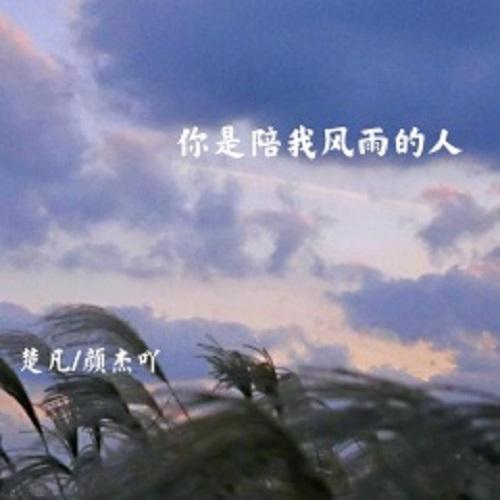 Ni Shi Pei Wo Feng Yu De Ren 你是陪我风雨的人 You Are My Companion Lyrics 歌詞 With Pinyin By Hong Qiang Wei 红蔷薇