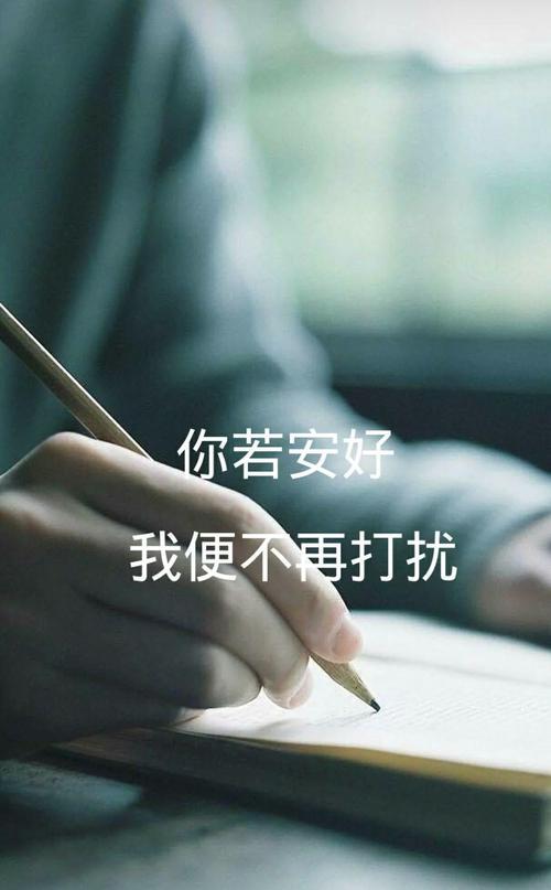 Ni Ruo An Hao Wo Bu Zai Da Rao 你若安好我不再打扰 If You're Fine, I Won't Disturb You Any More Lyrics 歌詞 With Pinyin By Leng Mo 冷漠