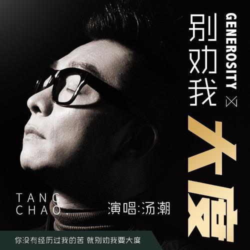 Bie Quan Wo Da Du 别劝我大度 Don't Persuade Me To Be Generous Lyrics 歌詞 With Pinyin By Tang Chao 汤潮 Tang Chao
