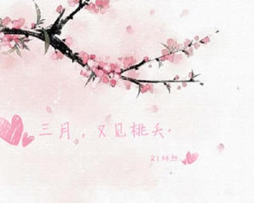 You Jian Luo Hua 又见落花 See Falling Flowers Again Lyrics 歌詞 With Pinyin By Sun Yi Qi 孙艺琪