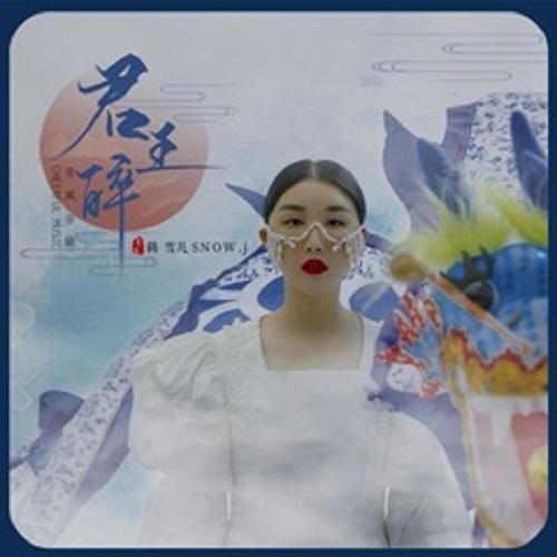 Jun Wang Zui 君王醉 The King Is Drunk Lyrics 歌詞 With Pinyin By Jiang Xue Er 蒋雪儿 Jiang Xueer