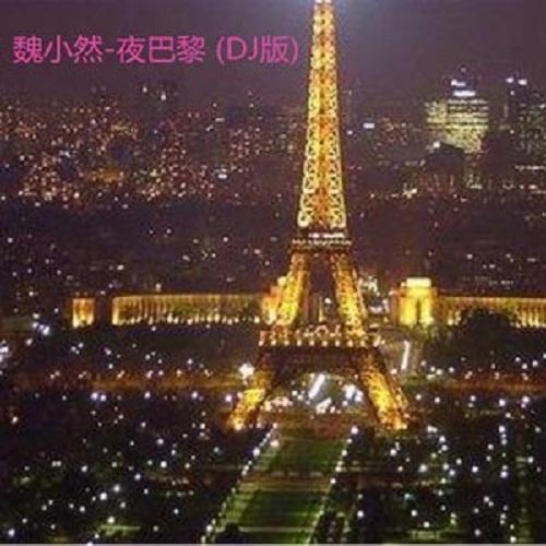 Ye Ba Ni 夜巴黎 Night Paris Lyrics 歌詞 With Pinyin By Wei Xiao Ran 魏小然