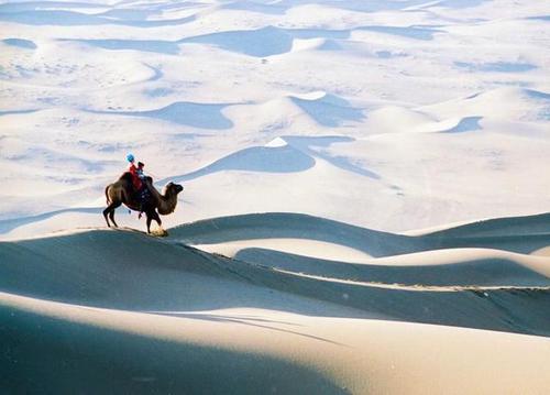 Da Mo Sha Ru Xue 大漠沙如雪 The Desert Is As Sandy As Snow Lyrics 歌詞 With Pinyin By A Lan 阿兰 Alan Dawa Dolma、Zha Xi Ping Cuo 扎西平措 Tashi Phuntsok