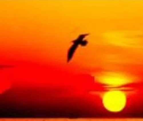 Gu Du Shi Wo Xiang Shou De Zi You 孤独是我享受的自由 Loneliness Is My Freedom Lyrics 歌詞 With Pinyin By Hu Er 虎二