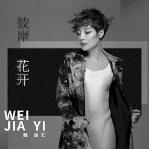 Bi An Hua Kai 彼岸花开 Flowers Bloom On The Other Side Lyrics 歌詞 With Pinyin By Wei Jia Yi 魏佳艺