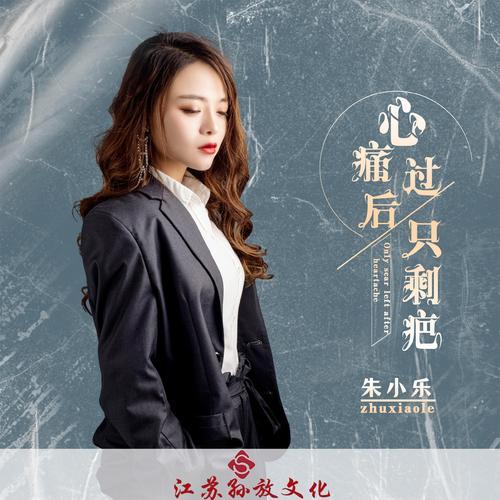 Xin Tong Guo Hou Zhi Sheng Ba 心痛过后只剩疤 Only Scar After Heartache Lyrics 歌詞 With Pinyin By Zhu Xiao Le 朱小乐