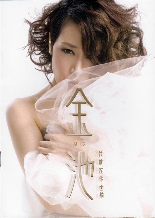 Wo De Hai 我的海 My Sea Lyrics 歌詞 With Pinyin By Jin Chi 金池 Ada Jin