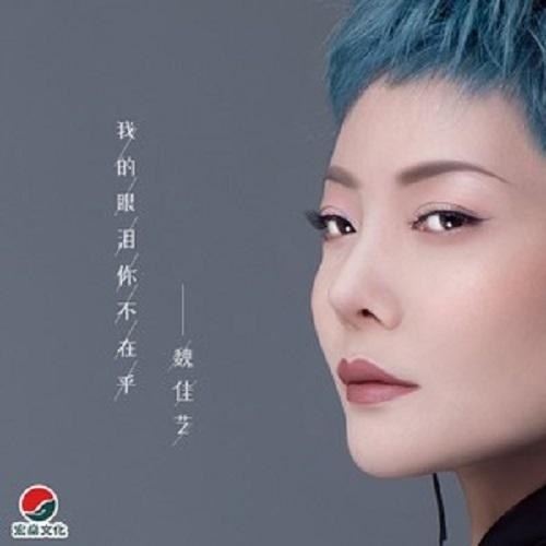 Wo De Yan Lei Ni Bu Zai Hu 我的眼泪你不在乎 You Don't Care About My Tears Lyrics 歌詞 With Pinyin By Wei Jia Yi 魏佳艺