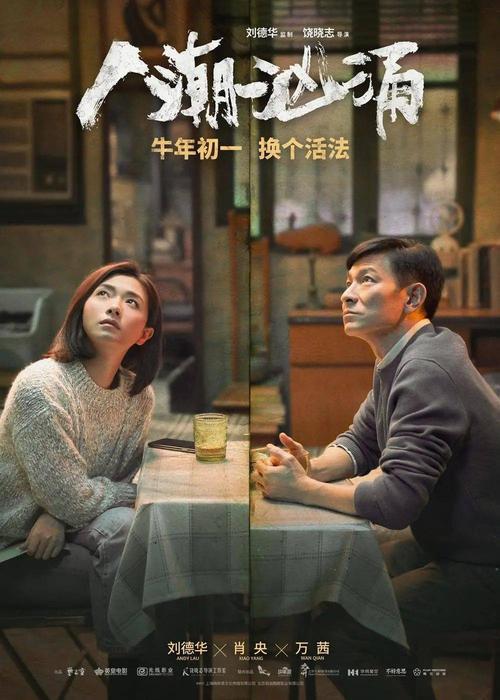 Xin De Yi Nian 新的一年 A New Year Lyrics 歌詞 With Pinyin By Liu De Hua 刘德华 Andy Lau 、Xiao Yang 肖央 Xiao Yang