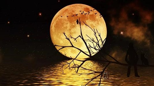Yue Luo Jin Ye 月落今夜 The Moon Falls Tonight Lyrics 歌詞 With Pinyin By Sun Peng Kai 孙鹏凯Yue Luo Jin Ye 月落今夜 The Moon Falls Tonight Lyrics 歌詞 With Pinyin By Sun Peng Kai 孙鹏凯
