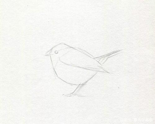 Mei Jiao De Xiao Niao 没脚的小鸟 A Bird Without Feet Lyrics 歌詞 With Pinyin By Gao Sheng Mei 高胜美