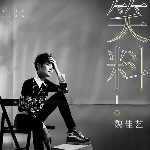 Xiao Liao 笑料 Jokes Lyrics 歌詞 With Pinyin By Wei Jia Yi 魏佳艺