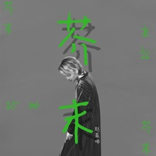 Jie Mo 芥末 Mustard Lyrics 歌詞 With Pinyin By Zhao Chen Xi 赵晨唏