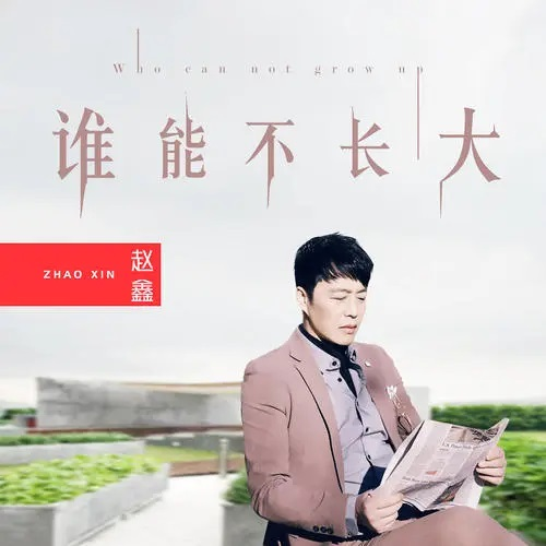 Shei Neng Bu Zhang Da 谁能不长大 Who Can Not Grow Up Lyrics 歌詞 With Pinyin By Zhao Xin 赵鑫