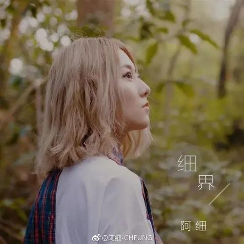 Lu Deng 路灯 Street Lamp Lyrics 歌詞 With Pinyin By A Xi 阿细