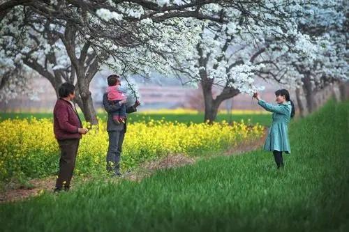 Ta Chun Xing 踏春行 Spring Outing Lyrics 歌詞 With Pinyin By Ren Yi Da Ren 人衣大人