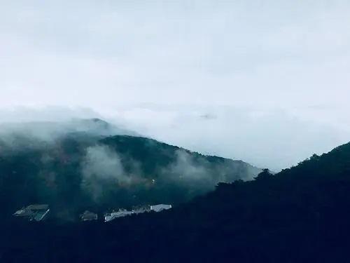 Yuan Shan Dai 远山黛 Distant Mountain Daisy Lyrics 歌詞 With Pinyin By Yin Xi Mian 尹昔眠、Xiao Tian Yin Yue She 小田音乐社