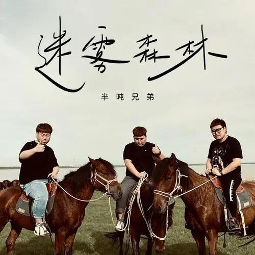Mi Wu Sen Lin 迷雾森林 Misty Forest Lyrics 歌詞 With Pinyin By Ban Dun Xiong Di 半吨兄弟