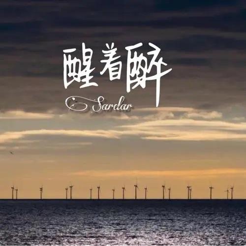 Xing Zhe Zui 醒着醉 Wake Up But Drunk Lyrics 歌詞 With Pinyin By Ma Liang 马良