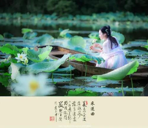 Cai Lian Qu 采莲曲 Lotus Song Lyrics 歌詞 With Pinyin By Chen Yu 陈珏