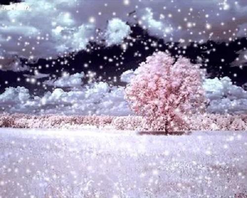Fei Xue 飞雪 Falling Snow Lyrics 歌詞 With Pinyin By Murong Xiao Xiao 慕容晓晓 Murong Xiaoxiao