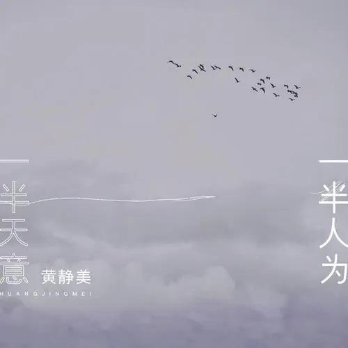 Yi Ban Tian Yi Yi Ban Ren Wei 一半天意一半人为 Half God, Half Man Lyrics 歌詞 With Pinyin By Huang Jing Mei 黄静美