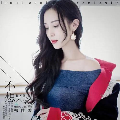 Bu Xiang Bu Nian Bu Da Rao 不想不念不打扰 Don't Think,Read Or Disturb Lyrics 歌詞 With Pinyin By Huang Jing Mei 黄静美、Ren Xia 任夏